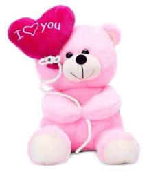 Pink Teddy Bear(27 cm)