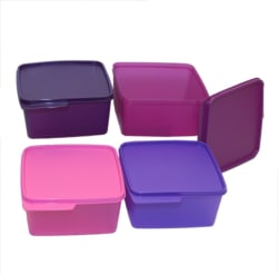 Tupperware - 1.2 L Plastic Grocery Container (Pack of 4, Multicolor)