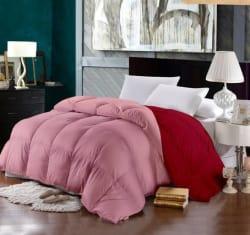 Raymond Plain Double Comforter (Microfiber, Pink)