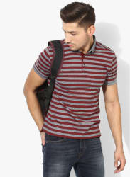 Grey Striped Regular Fit Polo T-Shirt