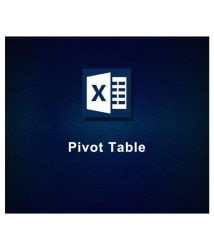 Pivot Table (Online Study Material)