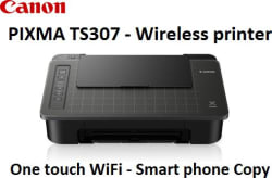 Canon PIXMA TS307 Wireless Printing with Copying Single Function Colored Inkjet Printer