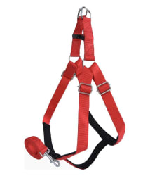 Pawzone Dog Body Harness with Leash (Red)