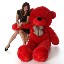 AVS 5 Feet Stuffed Spongy Huggable Cute Teddy Bear - 152 cm (Red Color)