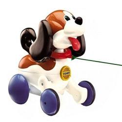 Sit N Walk Puppy