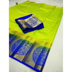 Fab Brand Multicolor Kanjivaram Raw Silk Saree