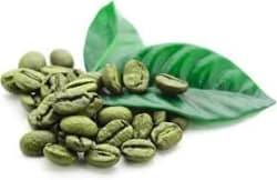 Mazoria Pure Organic Green Coffee Beans for Weight Management 500 gm pack