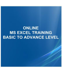 I Turn Institute Online MS Excel Professional Training Program from Basic to Advance Online Study Material