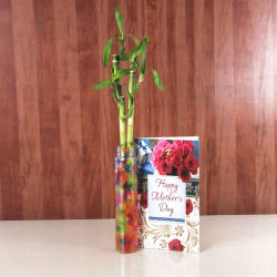Giftacrossindia Mothers Day Card With Good Luck Bamboo Plant (GAICORMOT2017093)