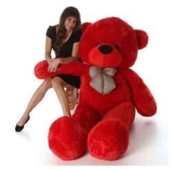 ZOONIO Red Teddy Bear - 80 cm