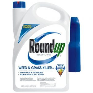 Stock photo of RoundUp weed & grass killer