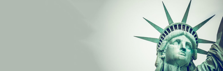 Statue of Liberty with greenish-grey colored sky