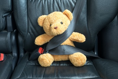 Teddy Bear Buckled in Car