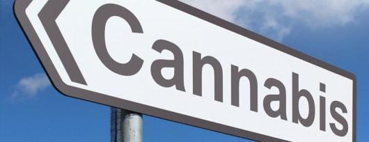 cannabi, galenica, preparati a base di cannabis