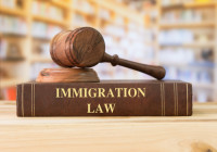 Should illegal immigration be allowed in the United States?