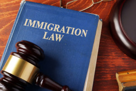 Should undocumented immigrants be able to vote?
