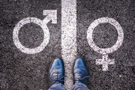 should transgenders be allow to go to a school that only allows the associated gender?