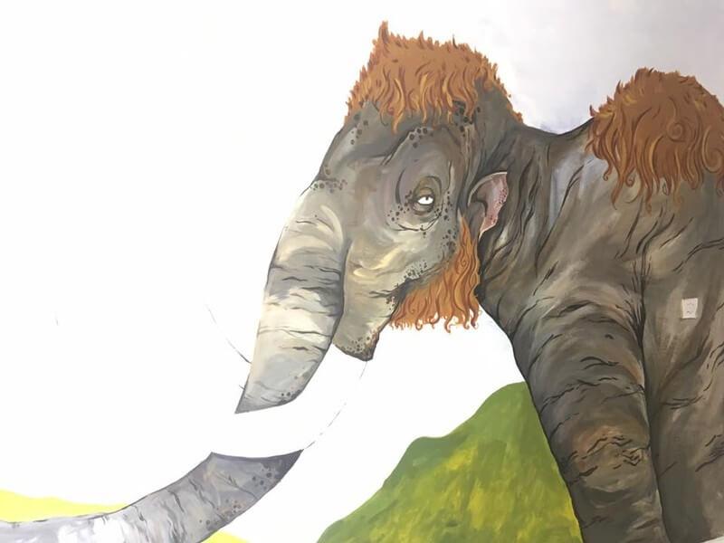 Close up of Mammoth Wall