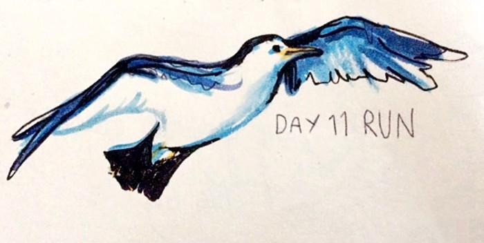Day 11: Run