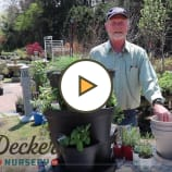 Helpful hints for creating an herb garden using planters for those small spaces