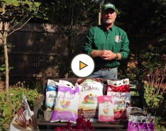 Fall Fertilizing Plants, Trees & Shrubs