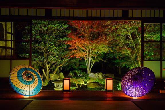 【2021年】京都のライトアップ紅葉のおすすめスポット!時期や見頃もご紹介
