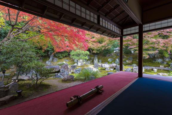 【2021年版】もう迷わない!京都のとっておきの紅葉名所15選