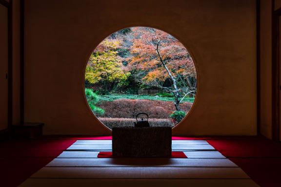 【2021年版】鎌倉のおすすめ紅葉スポット名所特集!見頃・時期・ライトアップ情報