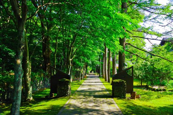 夏の軽井沢観光はココがおすすめ!避暑地の美しい自然でリフレッシュ