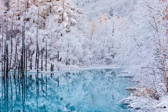 冬の北海道観光の楽しみ方!絶景スポットと注目のイルミネーションイベント