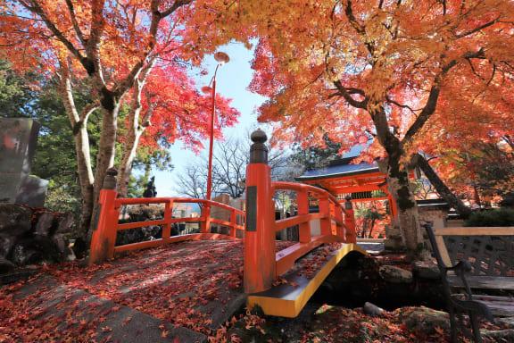 【2021年版】奈良の紅葉穴場といえば?見頃や時期も一挙にご紹介