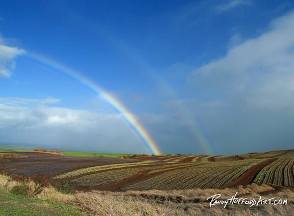 hhttps://res.cloudinary.com/decosites/image/upload/c_fit,h_600,w_600/v1446629816/Rainbow_Pukalani_niv9zt_yb0bfi.jpg