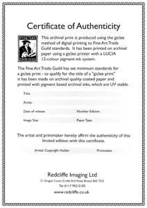 Certificates for Limited edition print certificate of authenticity template