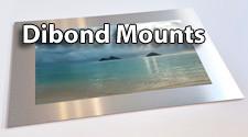 Dibond Mounts