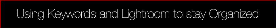 Using Keywords and Lightroom to stay Organized