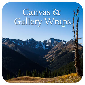 Canvas & Gallery Wraps