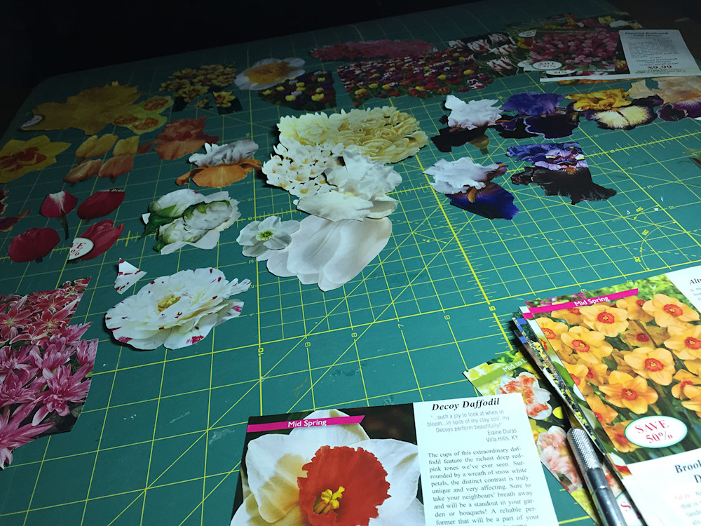(A cutting board is covered with clippings of flower photos)