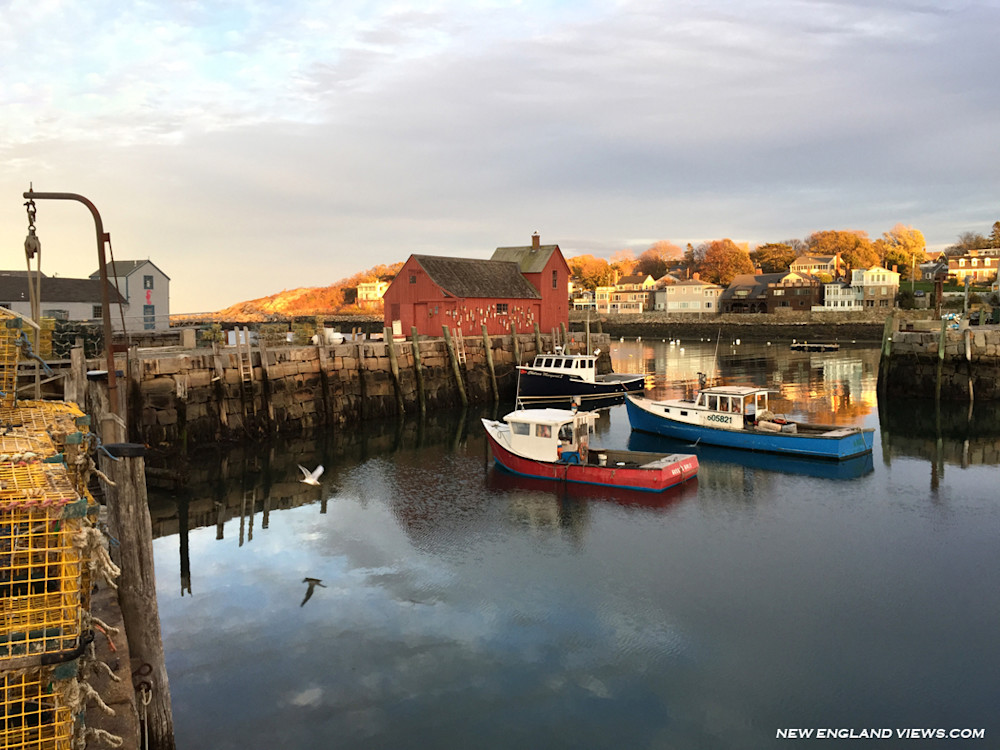 Rockport Harbor, Motif #1, Lobster Boats, Headlands, Gull, Cape Ann