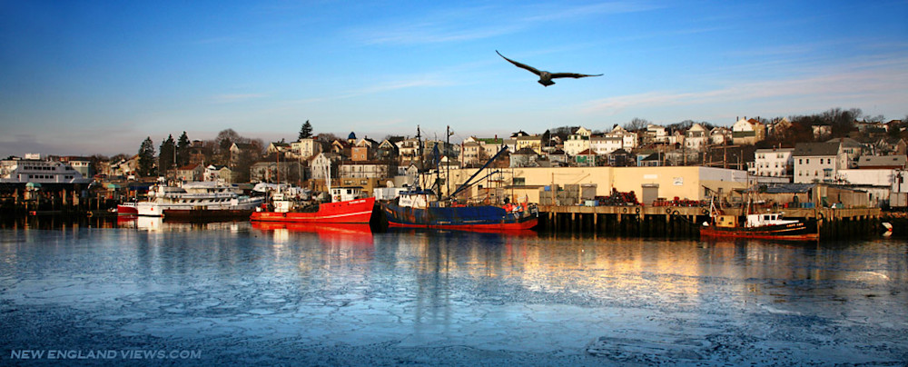 Gloucester Harbor Panorama, Fishing Boats, Gull, Winter Ice