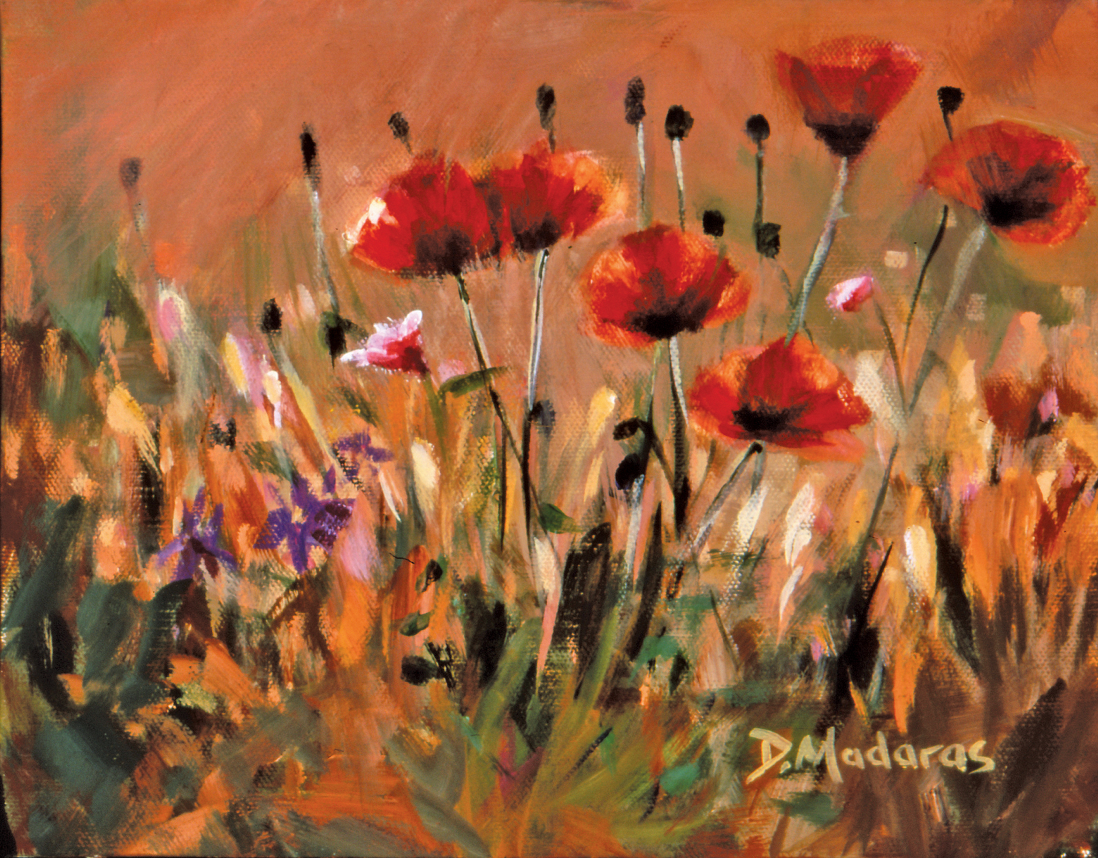 Poppies_eh6lw3