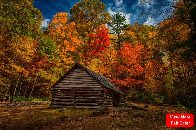 Fall_color_qjhcpk