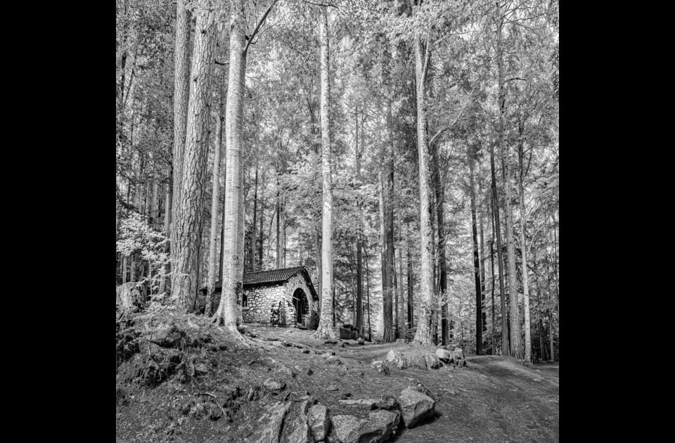 Chapel_in_the_woods_-_vivario_-_corsica_-_france_czfmag