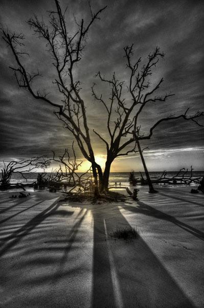 Hunting_sunrise_no._i_dp4g5e