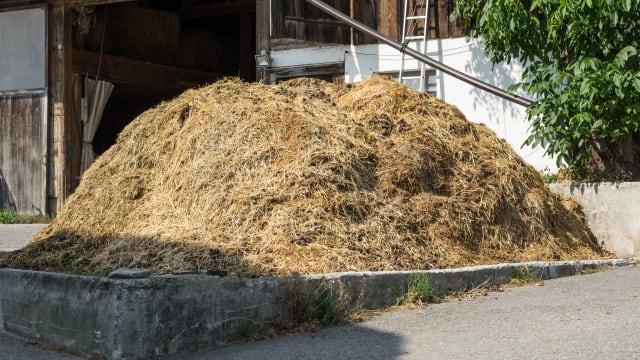 Die Schweizer Landwirtschaft produziert mehr Mist, als es für die Umwelt gut wäre.