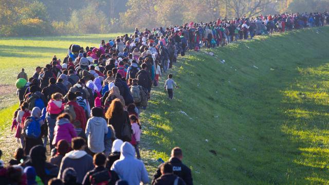 Der Migrationspakt soll die Zusammenarbeit in der Migrationspolitik erleichtern. Bild:  Janossy Gergely / Shutterstock.com