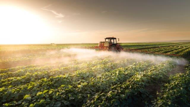 Synthetische Pestizide sollen verboten werden. Biologische Pestizide auch? Bild: Shutterstock