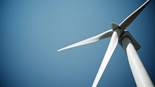 Windräder sollen stillstehen, wenn Fledermäuse unterwegs sind. Bild: Shutterstock