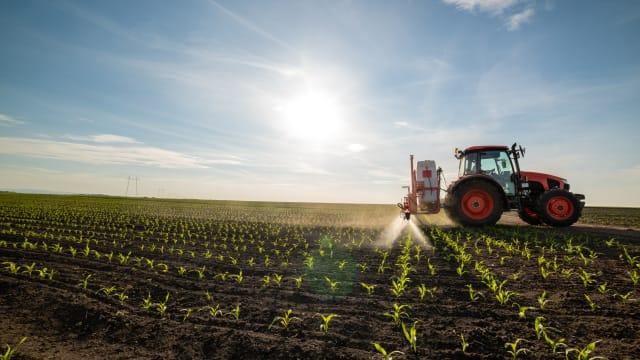 Die Entwicklung von Pestiziden dauert immer länger und kostet immer mehr. Bild: Shutterstock
