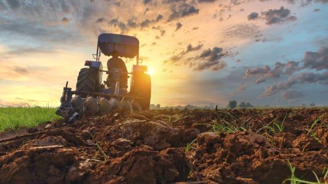 Landwirtschaft auf der Siegerstrasse. Bild: Shutterstock