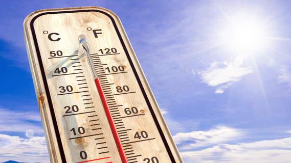 Trotz steigenden Temperaturen geht die Zahl der Hitzetoten an vielen Orten zurück. Bild: Shutterstock